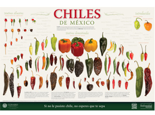 Cartel chiles