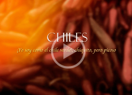 Video Chiles